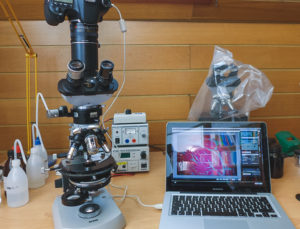 how do digital microscopes work